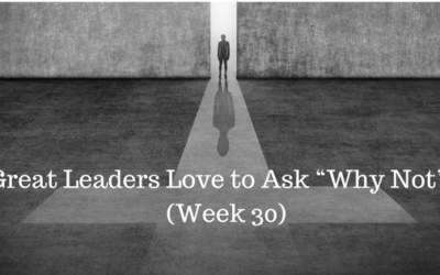 """Great Leaders Love to Ask """"Why Not""""? – Week 30"""